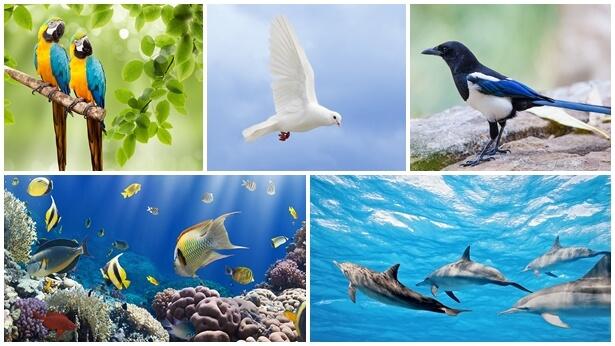În ziua a cincea, viața de diferite și variate forme înfățișează autoritatea Creatorului în diferite feluri
