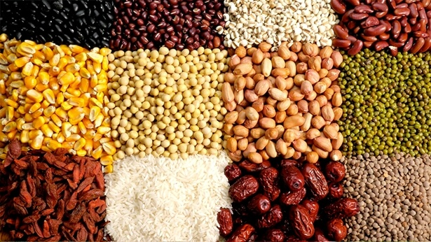 Toate felurile de mâncăruri vegetariene pe care Dumnezeu le pregătește pentru omenire