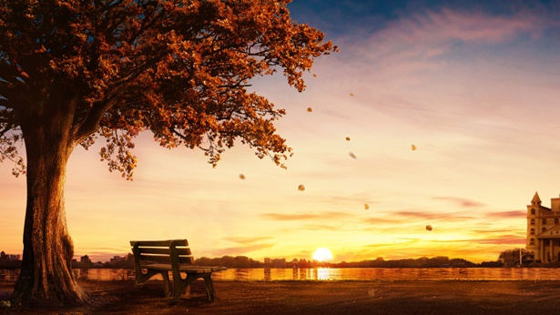 3. De ce adevărul exprimat de Dumnezeu în zilele de pe urmă poate să purifice omul, să-l desăvârșească și să devină viața lui?