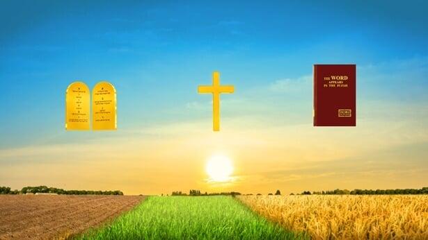 Întrebarea 19: Tu mărturisești că, în zilele de pe urmă, Dumnezeu Își face lucrarea de judecată pentru a-l purifica și mântui pe om pe deplin, dar, după citirea cuvintelor exprimate de Dumnezeu Atotputernic, găsesc că unele dintre ele îl condamnă și-l blestemă pe om. Dacă Dumnezeu îl condamnă și-l blestemă pe om, atunci omul nu trebuie să îndure pedeapsa? Cum poți să mai spui că acest fel de judcată purifică și mântuiește omenirea?