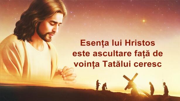 Esența lui Hristos este ascultare față de voința Tatălui ceresc