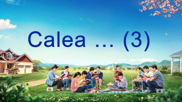 Calea … (3)